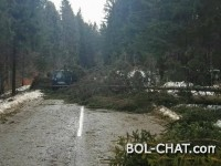 Vanredna stanja: Nekoliko gradova ostalo bez struje