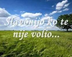 Prljavo Kazaliste - Uzalud Vam Trud Sviraci - Text