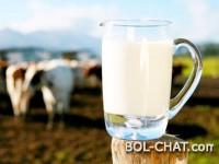 RAZOTKRIVENO: Evo što su zapravo 'svježe' i 'trajno' mlijeko i zašto nemaju veze sa sirovim mlijekom
