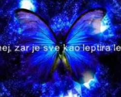 Dzenan Loncarevic - Lepic...