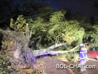 Opasno nevrijeme: Skijaš poginuo u Francuskoj, vjetar otpuhao voz sa šina u Švicarskoj