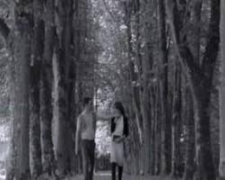 Marko Tolja - Nedostaješ mi ti (Oliver Dragojević)